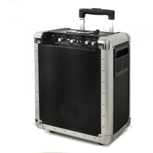 Portable DJ PA System with USB SD MP3 & Trolley