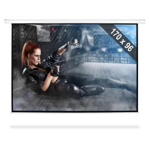 "Home Theater Projector Screen 77"" HDTV 1.71x96cm 16:9"