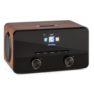 Connect 100 Web Radio Mediaplayer Bluetooth WLAN USB AUX Line Out noce
