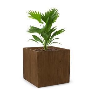 Timberflor Vaso de plantas 55 x 50 x 55 cm Fibra de vidro interna/externa marrom 55 x 50 x 55 cm
