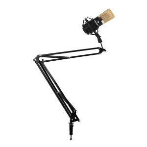 USB Studio Microphone in Gold / Black & Microphone Arm with Table Holder