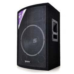 "SL12 PA Passiv-Lautsprecher 30cm (12"") Passiv-Box 600W Monitor"