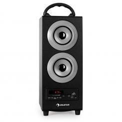 Beachboy Bluetooth-Lautsprecher USB SD AUX UKW/MW silber Silbergrau | L