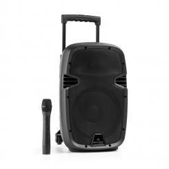 "Bushfunk 25 Aktiv-PA-Lautsprecher 500W Bluetooth Akku USB SD MP3 VHF 25 cm (10"")"