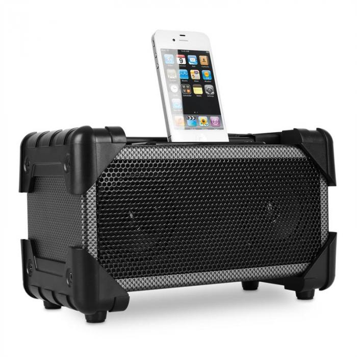 IFI-140 iPod-iPhone-Dockingstation AUX Carbon