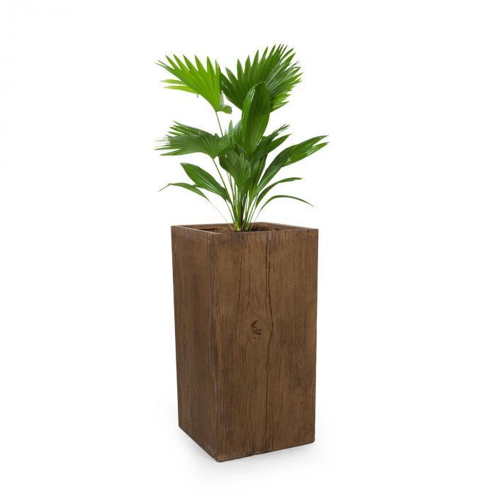 Timberflor Doniczka Na Rośliny 40x80x40cm Włókno Szklane Do Wewnątrzna Zewnątrz Brązowy