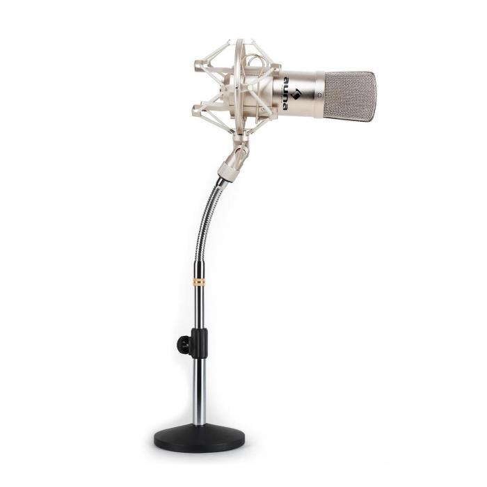 Set Microfono a Condensatore XLR Argento Stativo da tavolo