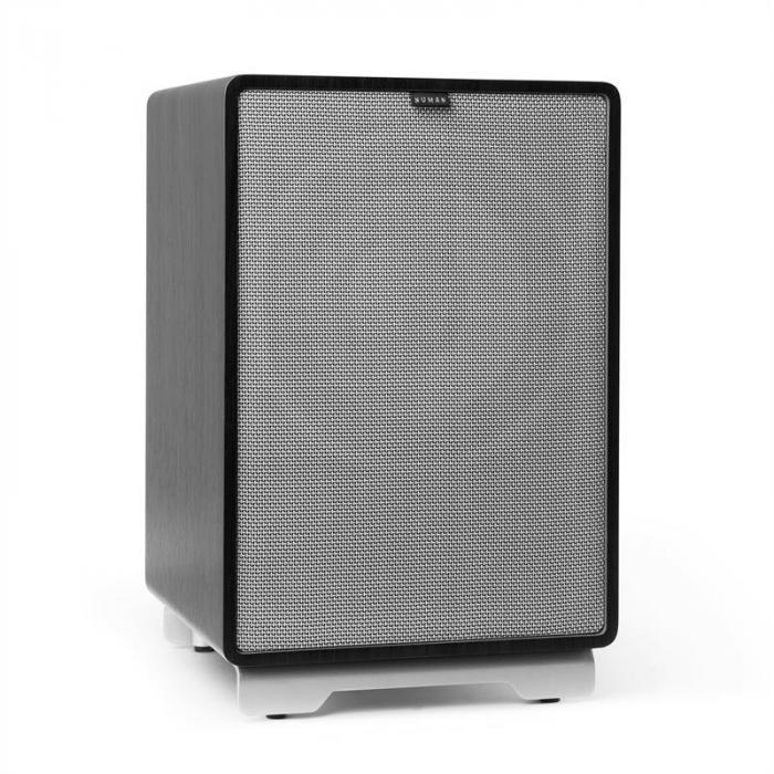 """RetroSub aktiivisubwoofer 25,4 cm (10"""") musta sis. suojus harmaa"""