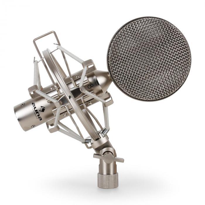 Microphone Set 1 x Studio Microphone 1 x Popscreen