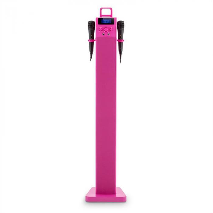 HiTower Altoparlanti A Torre Karaoke Bluetooth FM AUX USB Slot 2 x Microfoni