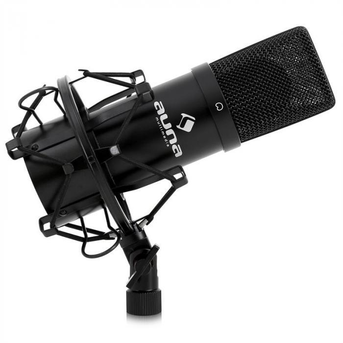 Set Microfono a Condensatore USB con Stativo da tavolo Collo