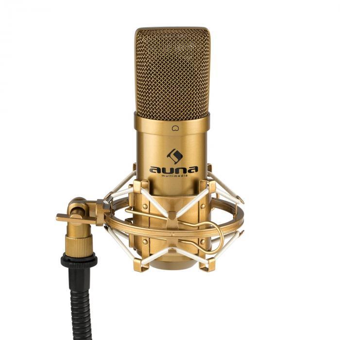 MIC-900G USB Kondensator-Mikrofon Niere Studio gold
