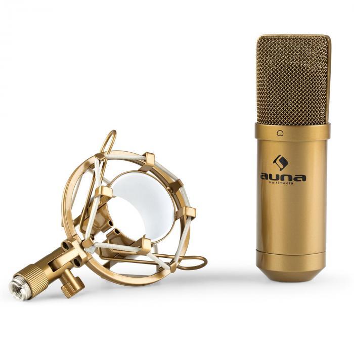 MIC-900G Condensatore-Microfono USB Rene Studio oro