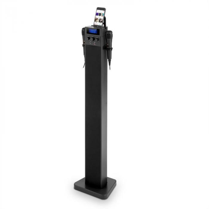 HiTower Karaoke Machine Tower with Bluetooth, USB Charging Port and Microphones