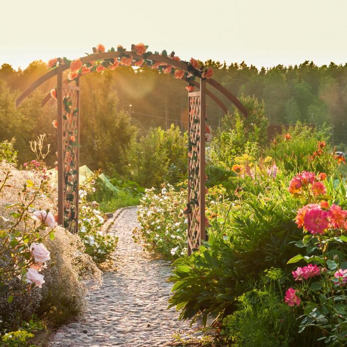 Puerta del Sol Pergola da Giardino per Rose Legno Massiccio
