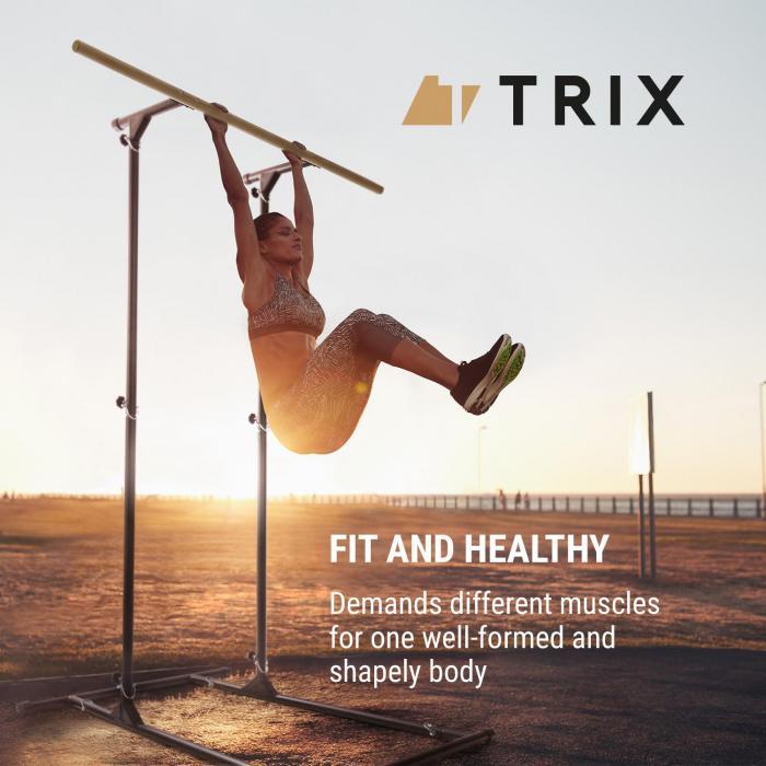 T-Trix Pull Up Station | MultiGym Concept | für Pull Ups & Chin Ups sowie Dips und Push Ups | max. Belastung: 100 kg | sandgestrahlter Stahl | Klimmzugstange aus massivem Buchenholz | inkl. Tragetasche | verstellbare Höhe