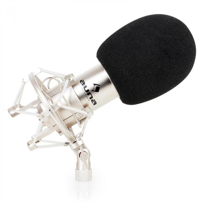 Studio Mikrofonset mit XLR Kondensator Mikrofon silber & Mikrofontischstativ